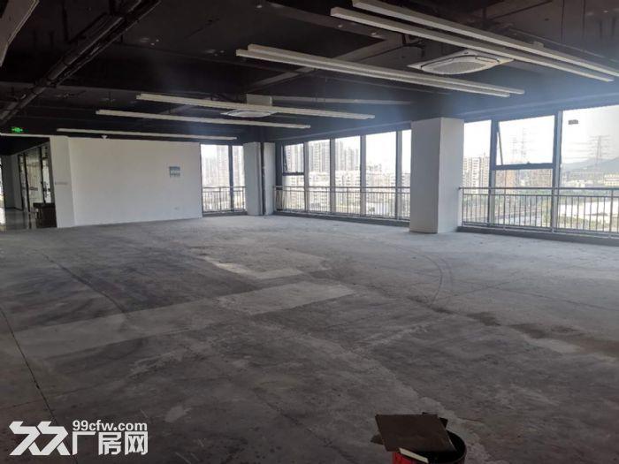 (非中介)出租8楼726平办公室厂房-图(6)