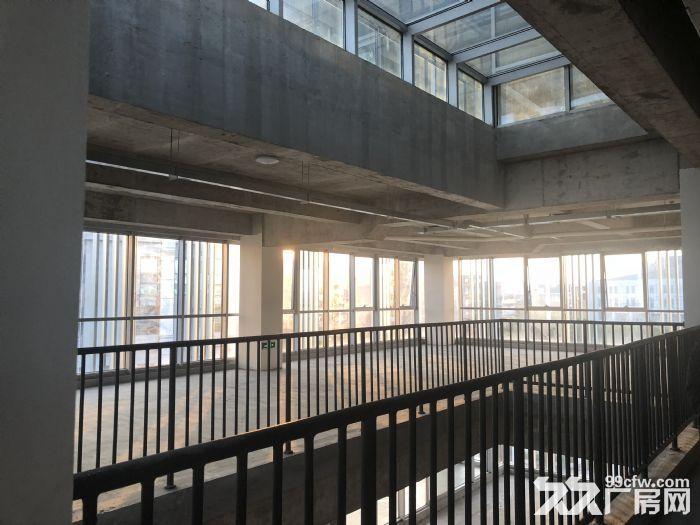 资源!独栋2500平,业主直售,5层单体,全新研发楼,大环评-图(2)