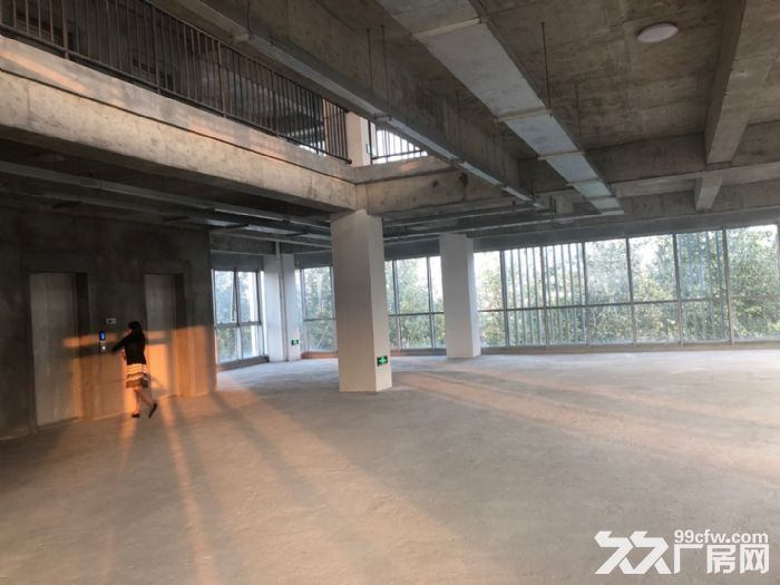 资源!独栋2500平,业主直售,5层单体,全新研发楼,大环评-图(5)