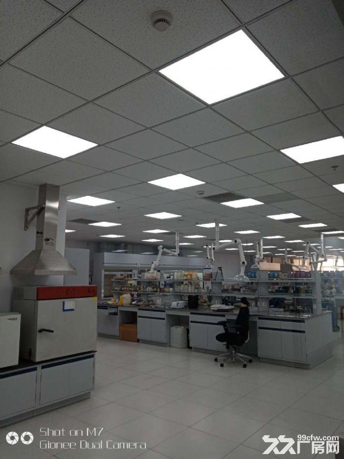 金海路地铁站旁,300平厂房,适医械组装,生化实验,检测仓储-图(2)