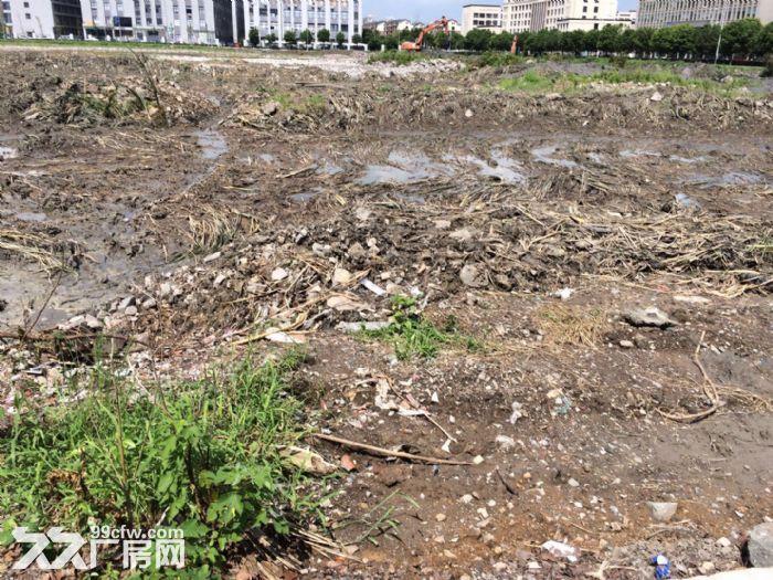 独家宁波市望春工业园区49亩纯土地,独门独院9840万-图(1)