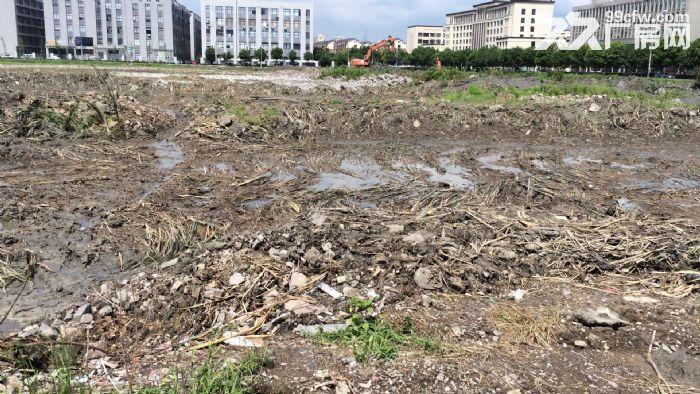 独家宁波市望春工业园区49亩纯土地,独门独院9840万-图(2)