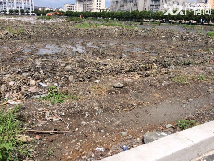 独家宁波市望春工业园区49亩纯土地,独门独院9840万-图(4)