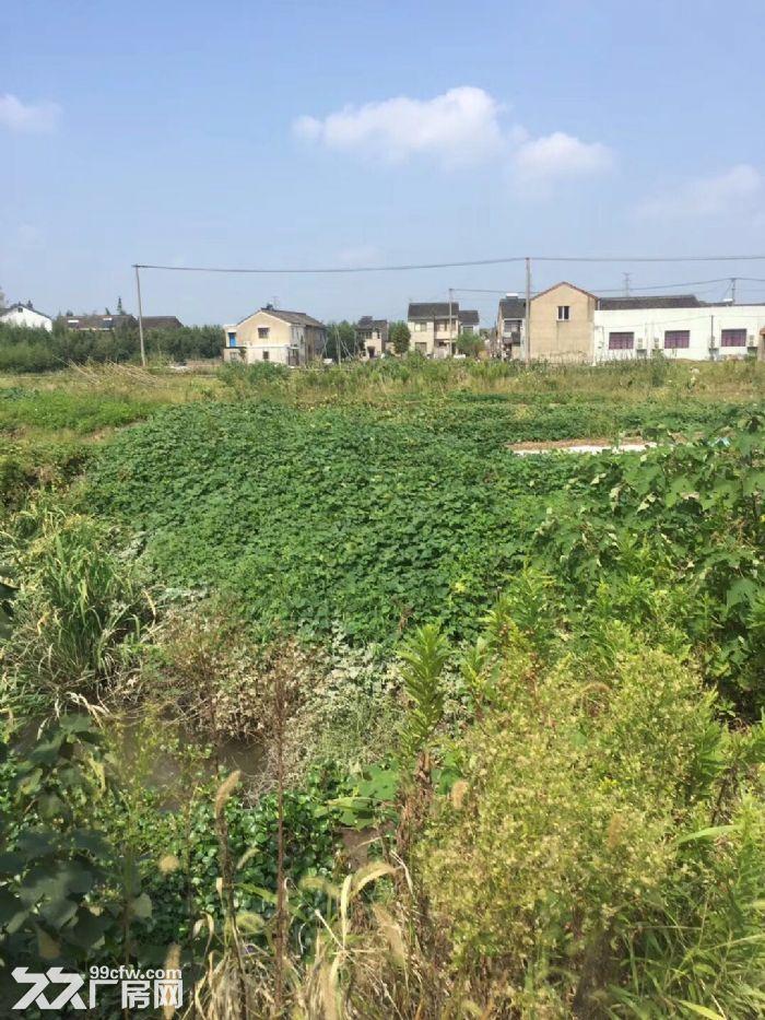 宁波市余姚三七市纯土地工业土地80亩1.08亿-图(1)