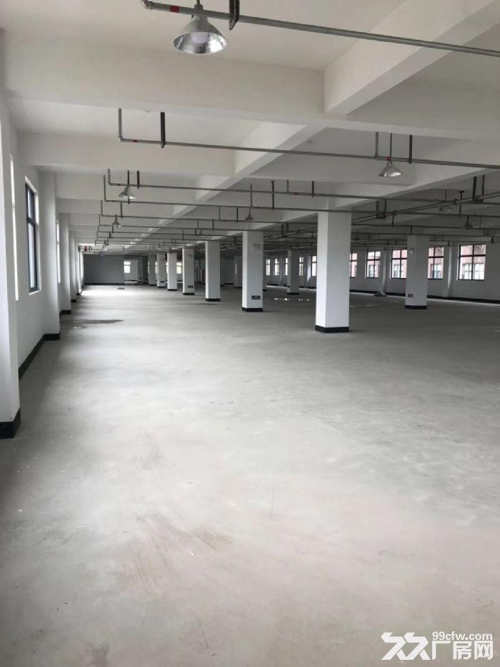 塘下北工业区厂房1500平米3000平米出租-图(1)