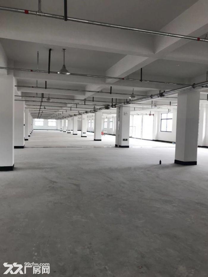 塘下北工业区厂房1500平米3000平米出租-图(3)