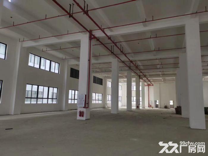 园区定制厂房独立产权可按揭-图(2)