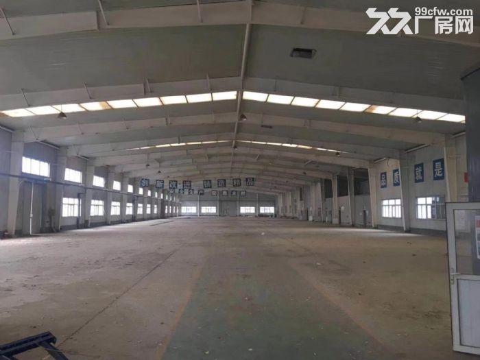 单层轻钢厂房出租,层高12米,生产环评,配套安保食堂等-图(1)