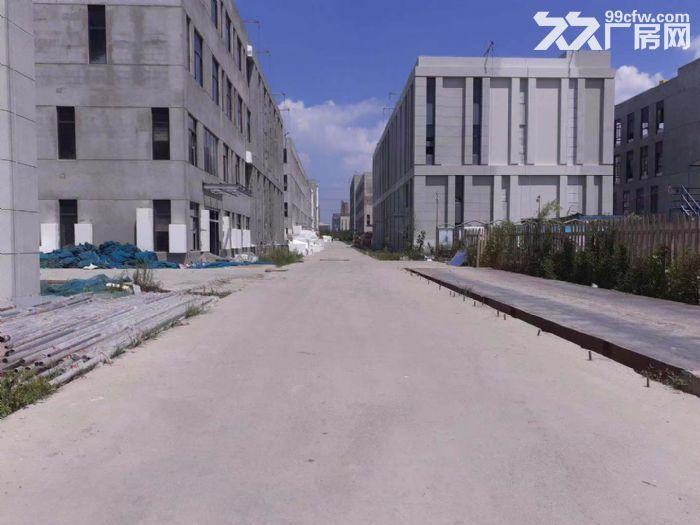 售新厂房新厂房新办公楼首层8.1米联排独栋50年产权-图(2)