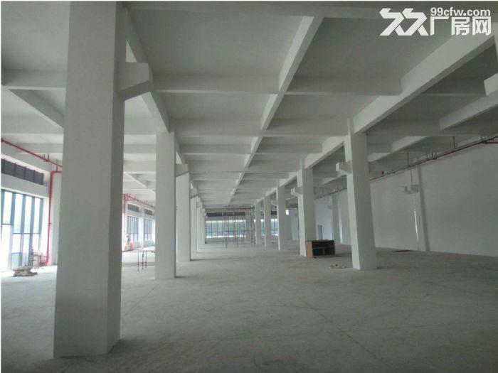 厂房出售【首层挑高8.1米、厂办一体】五证齐全、可贷款-图(4)