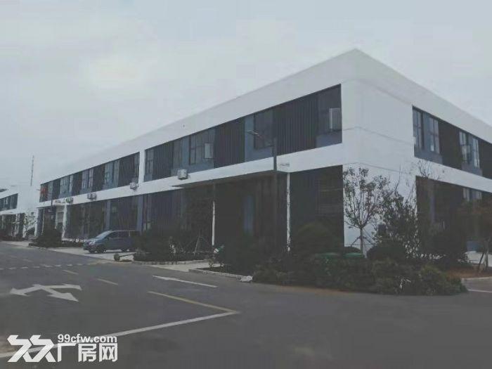 厂房出售【800−6000平】钢混结构【首层8.1米】可贷款-图(3)