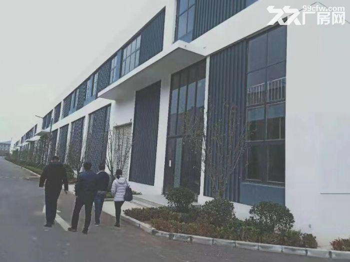 厂房出售【800−6000平】钢混结构【首层8.1米】可贷款-图(4)