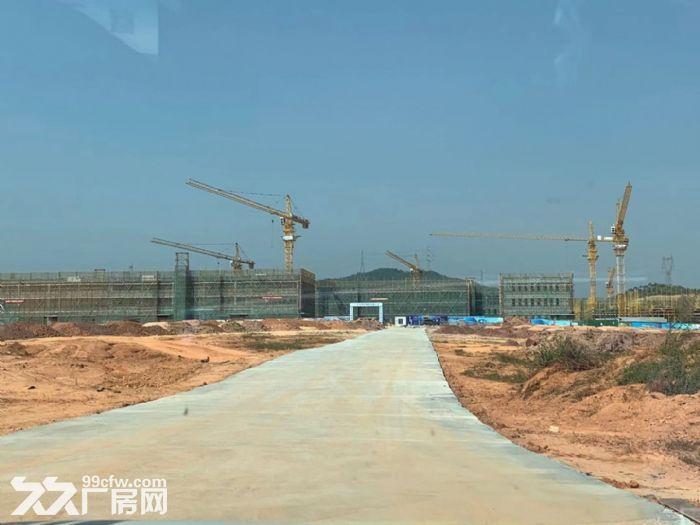 广州产业转移地江门新会全新50年产权厂房出售-图(5)