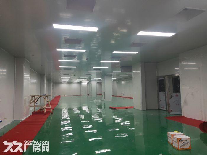 浦正地产,专业服务,康桥11号线地铁口旁200㎡至1400㎡精装办公环境好-图(2)