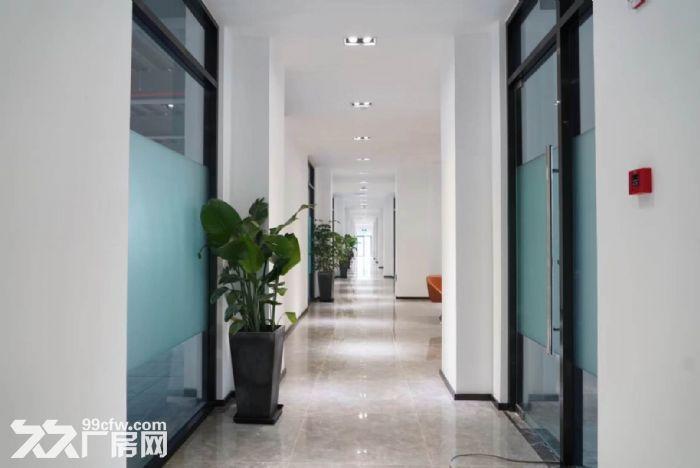 专业企业选址服务,张江九洲中心80平至2600平精装修文化创意设计办公室-图(2)