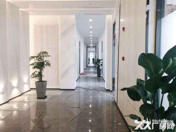 专业企业选址服务,张江九洲中心80平至2600平精装修文化创意设计办公室-图(3)