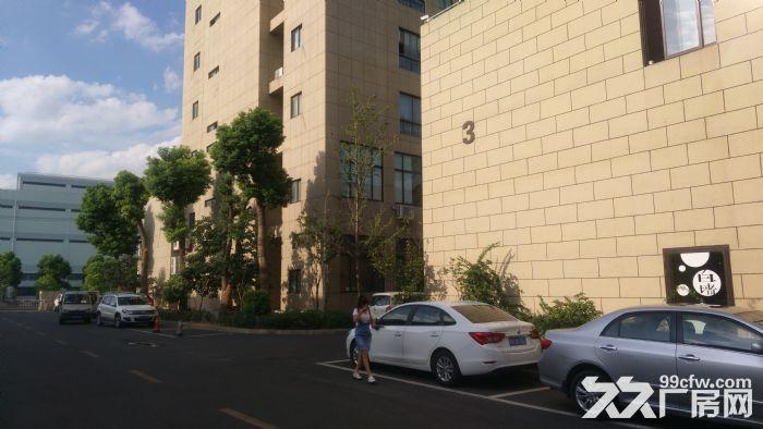 专业选址,免费服务,张江东区独栋12000平可分割研发办公厂房仓库总部办公,电联-图(1)