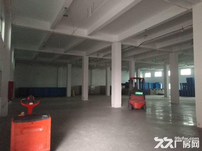 专业选址,免费服务,张江东区独栋12000平可分割研发办公厂房仓库总部办公,电联-图(2)