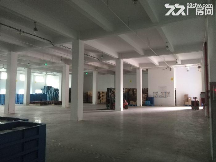专业选址,免费服务,张江东区独栋12000平可分割研发办公厂房仓库总部办公,电联-图(3)
