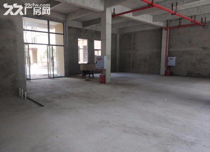 沙坪坝曾家单层钢结构标准厂房出租-图(6)