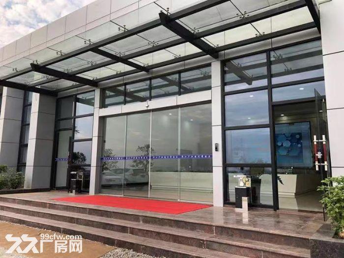 江门全新50年产权厂房,独栋/多层出售,可按揭-图(3)