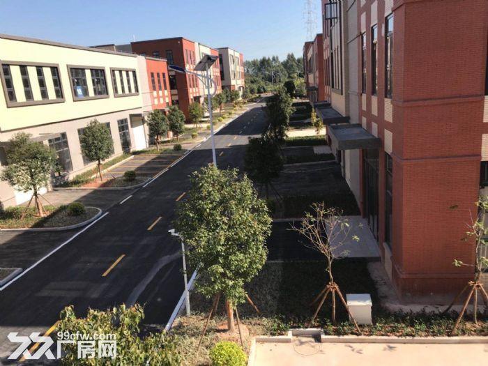 金塘大道旁全新花园式标准厂房出售-图(2)