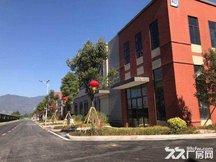 金塘大道旁全新花园式标准厂房出售-图(3)