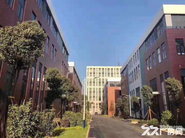 中山市首批独栋厂房—花园式厂房5层高出售-图(3)
