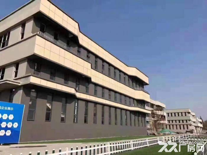 中山市首批独栋厂房—花园式厂房5层高出售-图(5)