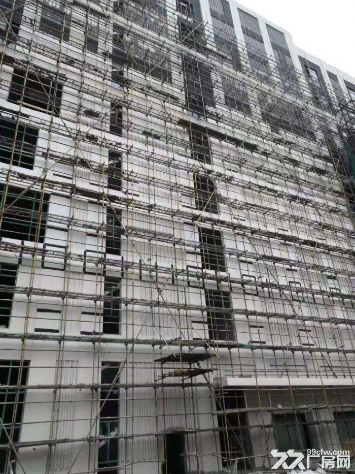 中山市首批独栋厂房—花园式厂房5层高出售-图(4)