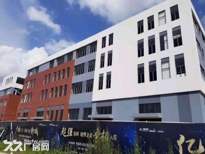 中山市首批独栋厂房—花园式厂房5层高出售-图(6)