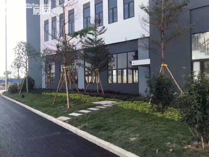江门全新50年产权厂房,独栋/多层出售,可按揭-图(6)