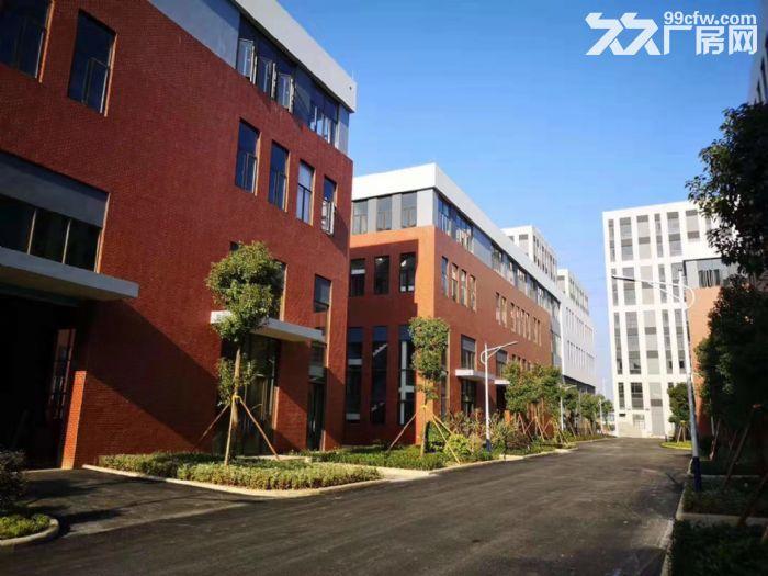 8.1米层高独栋花园式标准化厂房50年独立产权30%首付-图(2)