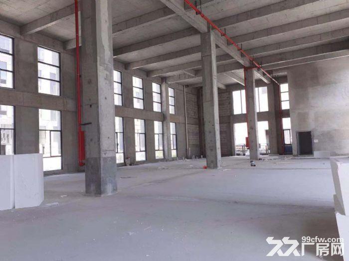 地铁口8.1米标准厂房600平起50年独立产权三成首付-图(1)