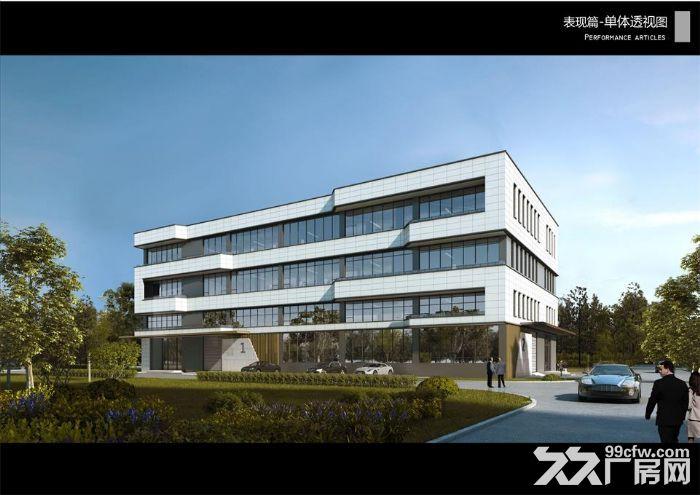 距离上海金山2公里厂房出售单价仅4800-图(2)