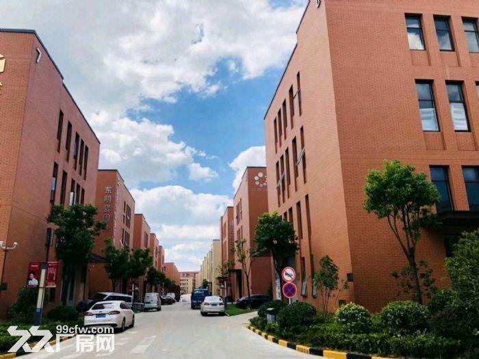 栖霞南京国家级经济技术开发区第一品牌工业产业园495−−6208平标准独栋多层厂-图(8)