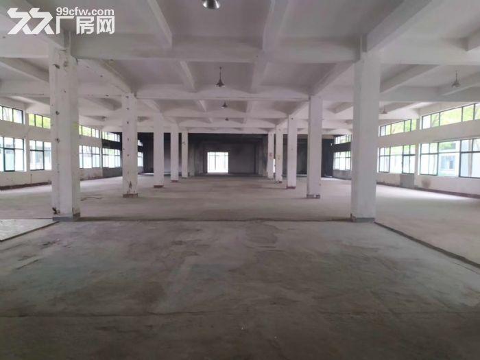独栋办公研发楼700平开发商直租无公摊可生产-图(3)