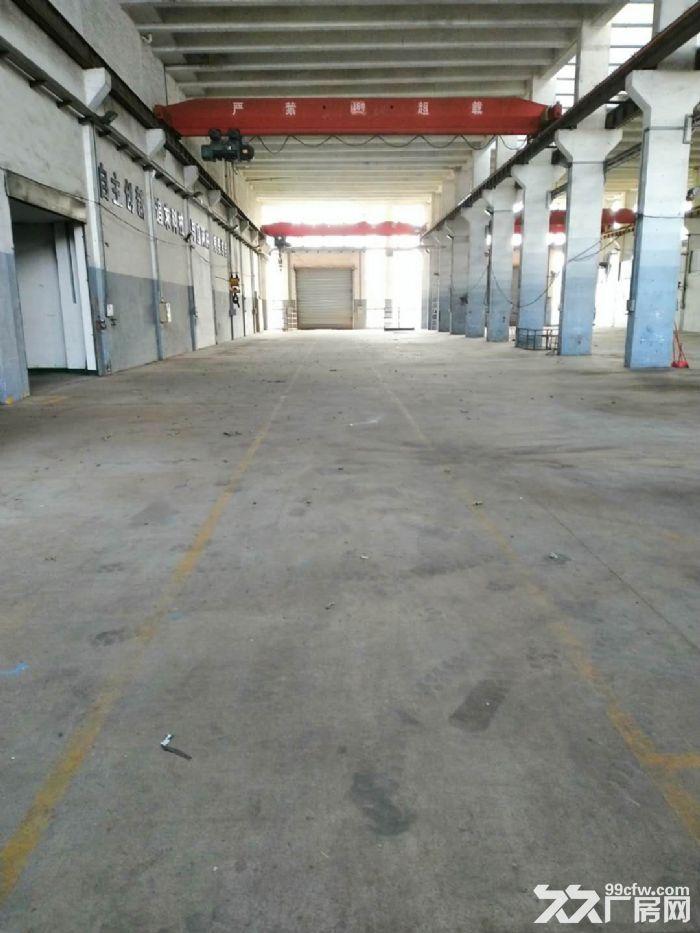 禅城区张槎35000平方米花园式厂房写字楼低价出租-图(3)