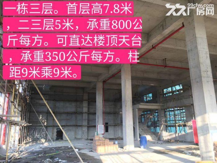 南海丹灶50年产权全新独门独院厂房2400方-图(7)