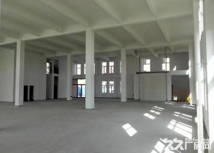 市区唯一在售大产权厂房-图(3)