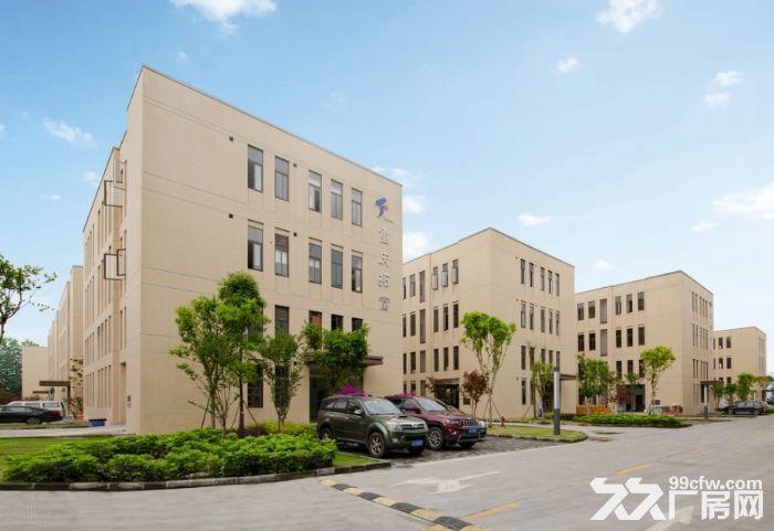 九龙坡、沙坪坝、大渡口工业园区独栋产权厂房(准现房可做环评可按揭)-图(7)