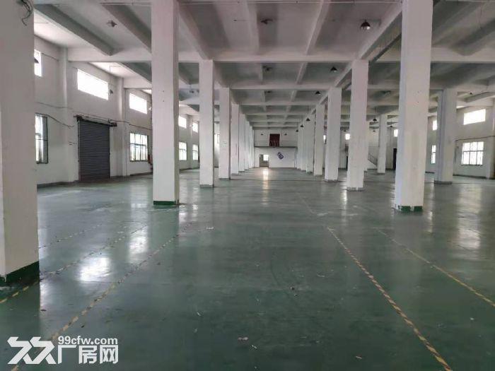 新桥新庙三路工业区1250平方一楼高标准高8米厂房仓库出租,104地块证件齐全,-图(2)
