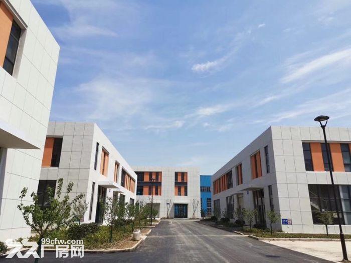 标准钢筋混凝土框架结构厂房,有产权,八米层高,交通便利-图(2)