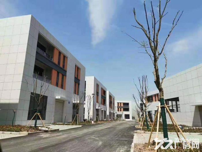 标准钢筋混凝土框架结构厂房,有产权,八米层高,交通便利-图(4)