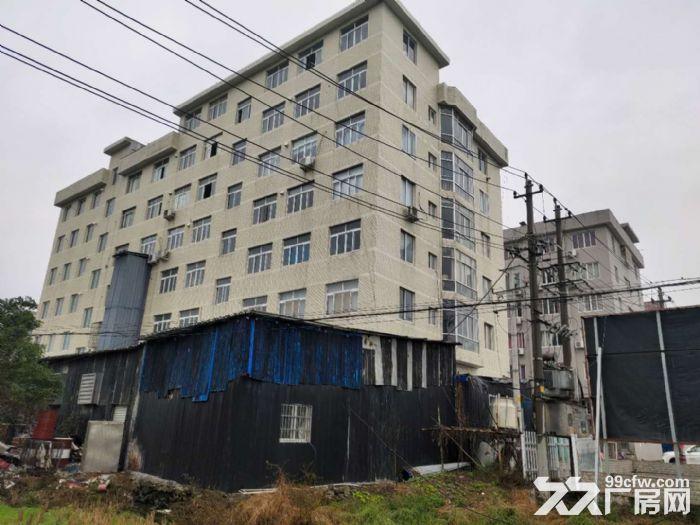 乐清市北白象镇厂房出租-图(4)