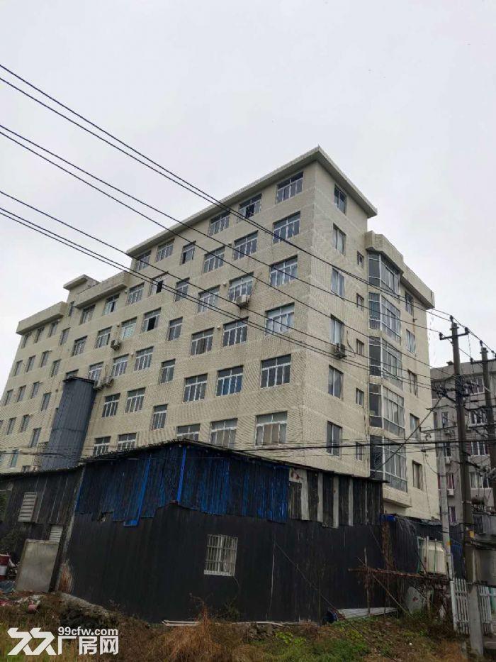 乐清市北白象镇厂房出租-图(3)