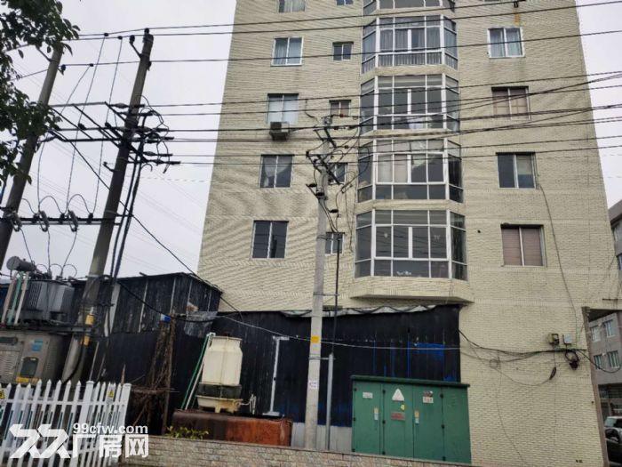 乐清市北白象镇独立厂房出租-图(2)