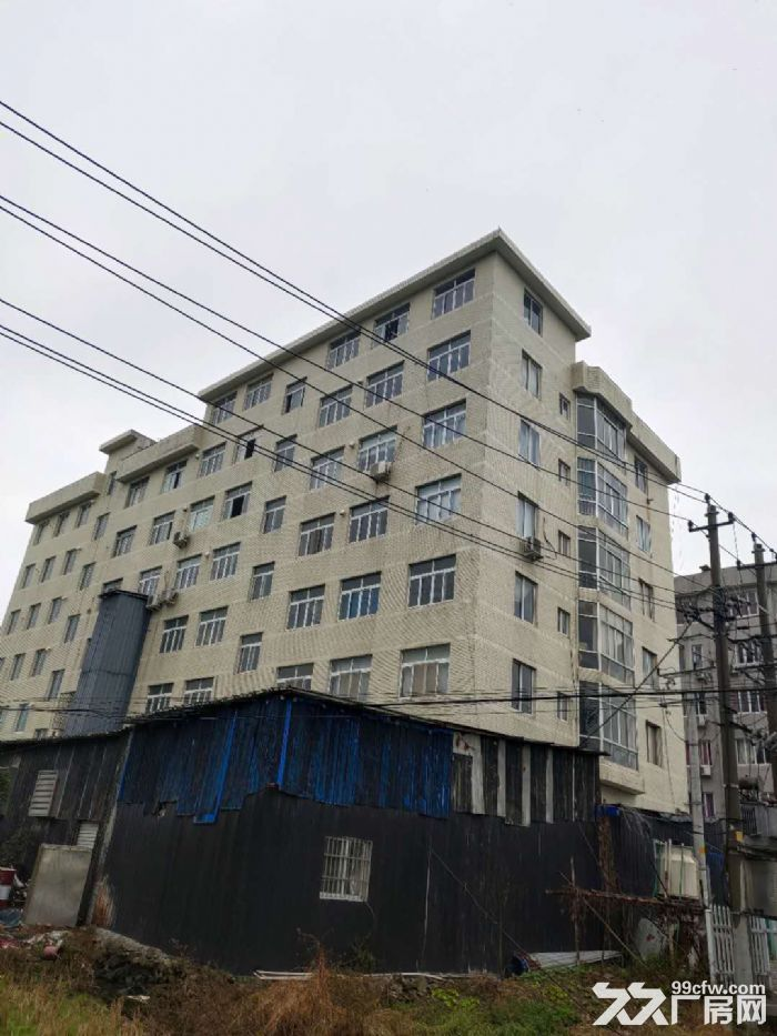 乐清市北白象镇独立厂房出租-图(3)