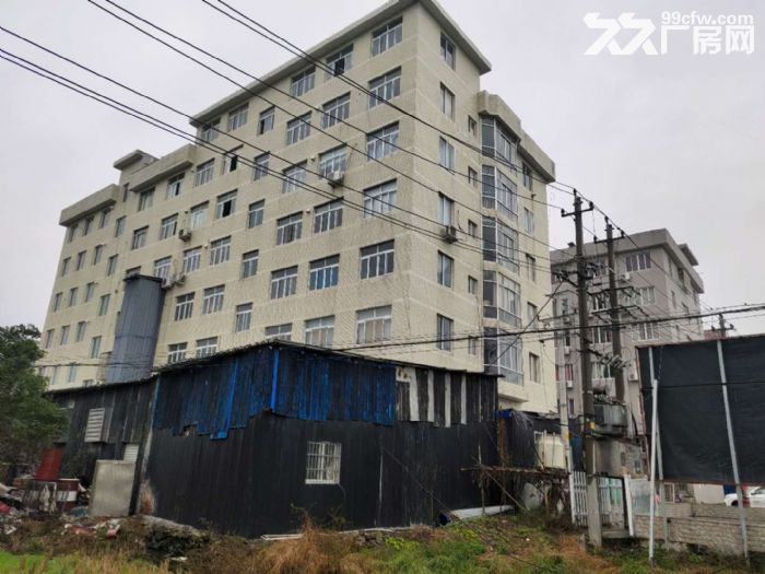 乐清市北白象镇独立厂房出租-图(4)