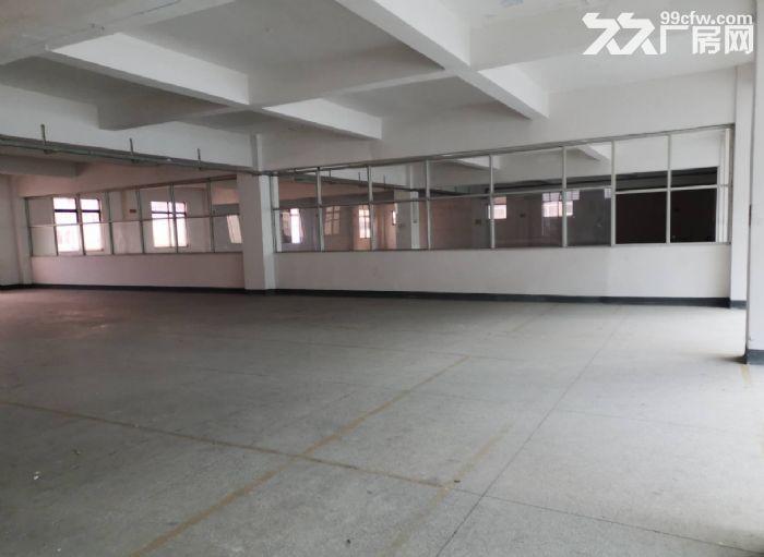 横栏益辉二路二楼单层面积1000平米厂房仓库招租可分租-图(1)